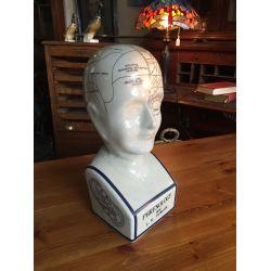 Large Phrenology Head